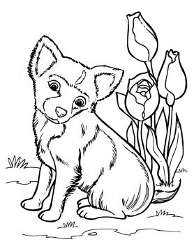 dog color pages printable puppy coloring pages free printable pictures coloring pages for kids