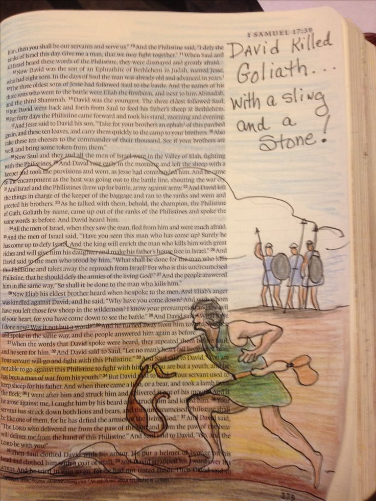 David killed Goliath.           1 Samuel 17
