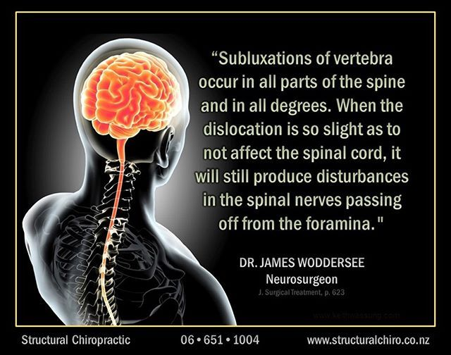 The Small Bones Of The Spine Are Called Vertebrae And Are Designed To Fit Together In An S Shape This Column Of Curve Spinal Nerve Vertebrae Health Promotion