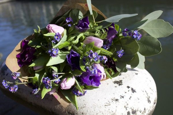 Flowers by the canal. Tulips, Forgetmenots, Anemones and Eucalyptus