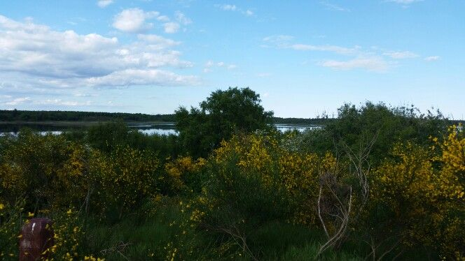 Tur ved søen
