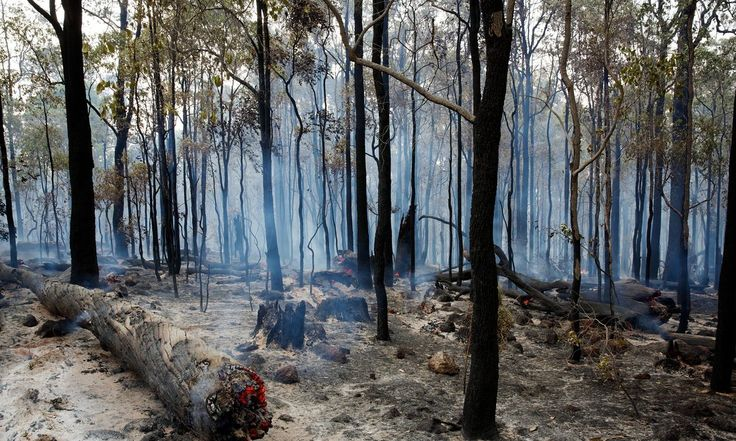 Western Australian bush fires destroy homes and lives.