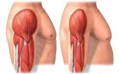 As 8 Principais Causas da Atrofia Muscular