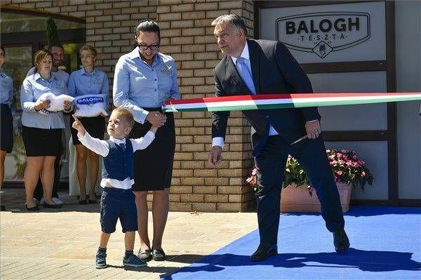 Megint+egy+Pénztáros+nevéhez+közeli+gyár+ami+minden+valószínűség+szerint+Orbán+családjának+nagy+részben+bevételt+termel! Orbán+szerint+a+magyarok+génjeikben+hordozzák+a+mezőgazdaságot! Ezért+is+hangsúlyozta:+a+magyar+ember+a+mezőgazdasághoz+ért+igazán.+Ez+az,+ami+a+génjeinkben+van,+és+a+tudás… ORBÁN MINDJÁRT MEGKAPJA A KÉT ZSÁK TÉSZTÁT JÓ MUNKÁJÁÉRT!