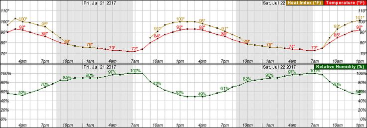 Hourly Weather Forecast for 30.01N 82.34W