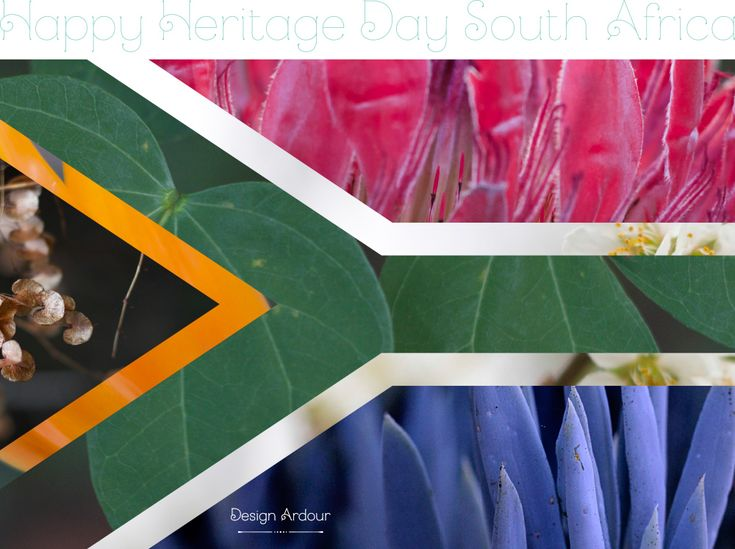 Design Ardour: Art & Design by Robyn Oosthuysen | Heritage Day | South Africa