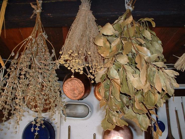 Herbs Sardinian style