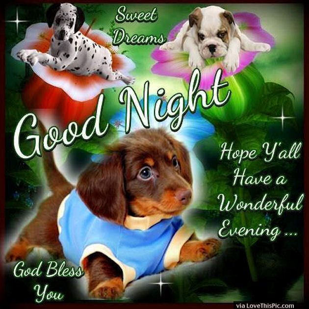 Good Night Sweet Dreams God Bless You