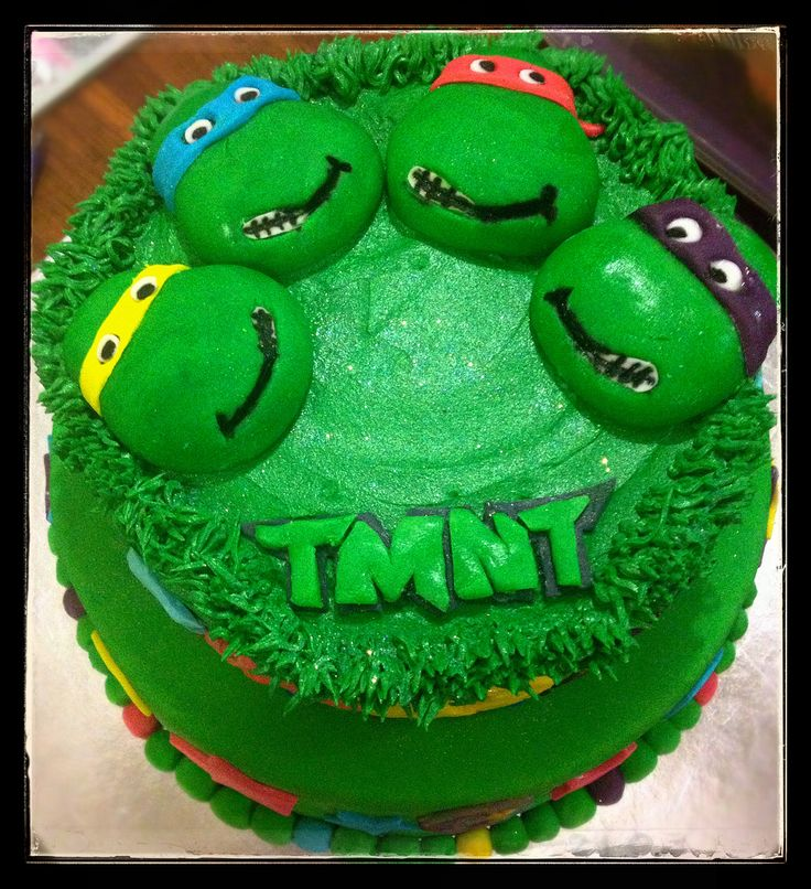 Jaden's 6th birthday - Teenage Mutant Ninja Turtles