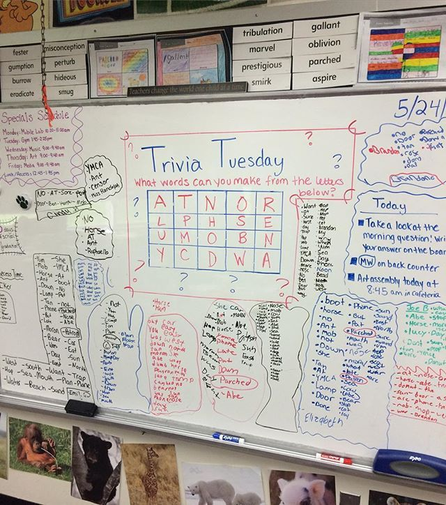 Catching up on some posts! Trivia Tuesday's were definitely the most popular #miss5thswhiteboard I did for the class. The kids always made it into a competition to who could find the most words! Some even found a few vocabulary words #longtermsub #iteach5th #teacher