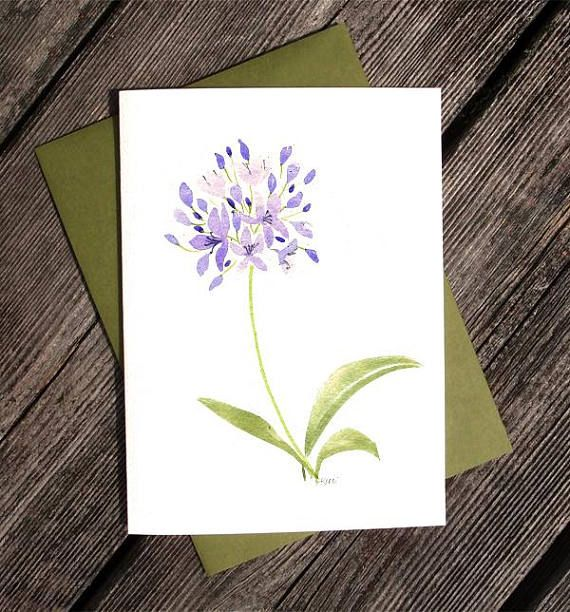 Violet Agapanthus Watercolor Greeting Card  Printed  Lily of