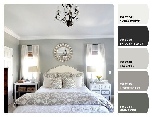 """Gray paint options from Sherwin Williams.  Friends of ours painted their bathroom with """"big chill."""": Wall Colors, Grey Bedrooms, Guest Bedrooms, Grey Wall, White Bedrooms, Master Bedrooms, Night Stands, Gray Bedrooms, Bedrooms Ideas"""