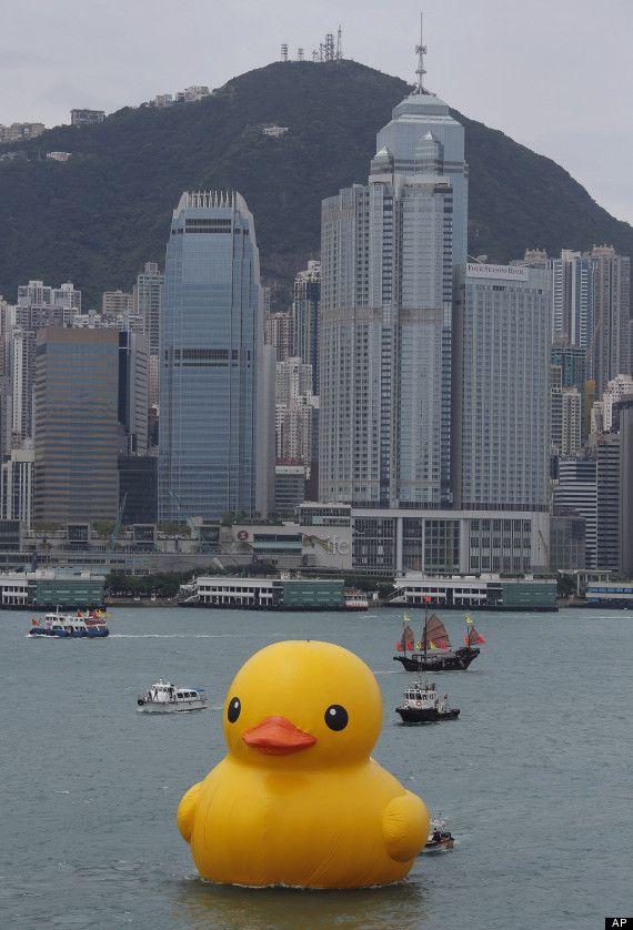 Giant Rubber Duck Sculpture by artist Florentijn Hofman (Holland) makes a splash in Hong Kong