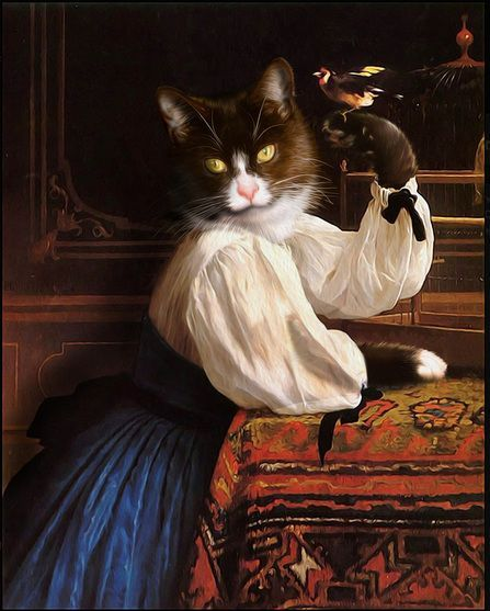 Коты и кошки аристократы.   31 фотография