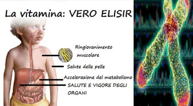 Ecco la Vitamina elisir di giovinezza: blocca l'invecchiamento degli organi! Tutti i cibi che la contengono
