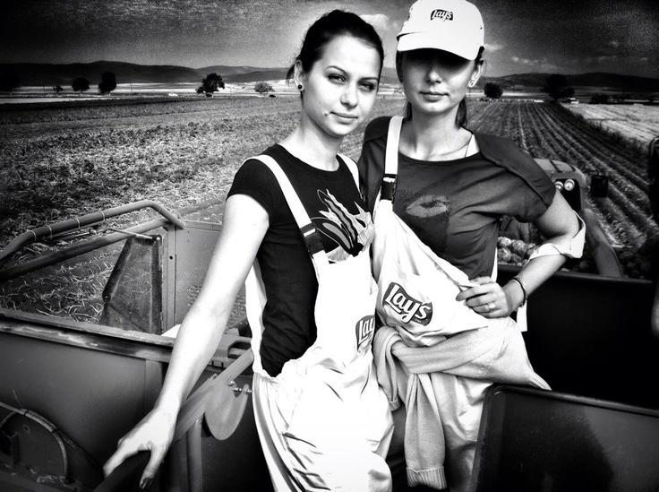 AUGUST- Purcedem la colectarea recoltei de cartofi #fermieriilays