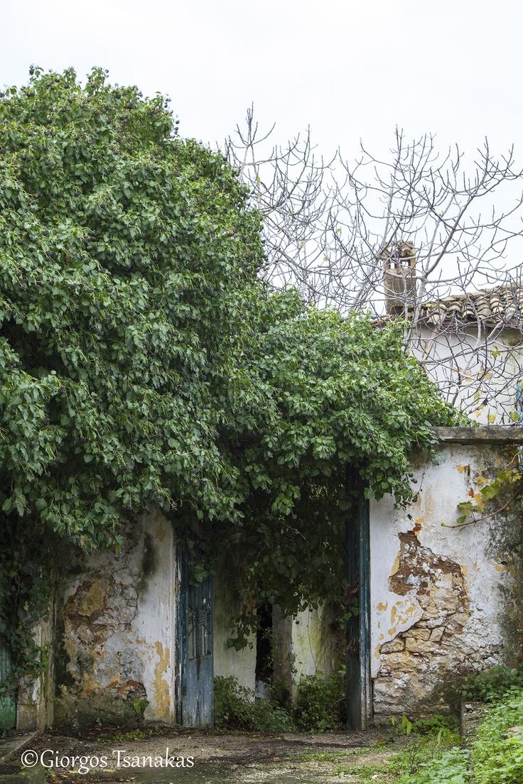 Ruins (16-12-12)