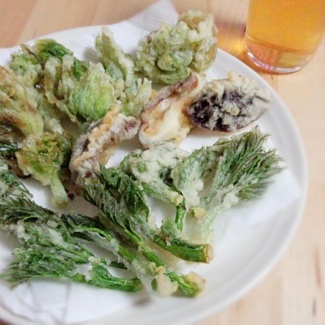 旬物を実家から貰ったので、天ぷらにしました(*^^*)♡  外でこれだけ旬の天ぷら食べたら高いけど‥お家だと贅沢に食べられますね笑 ビールとやっちゃいました(^o^) - 15件のもぐもぐ - 《春の天ぷら》 #たらの芽 #ふきのとう #椎茸 #山椒 by erichiiiii