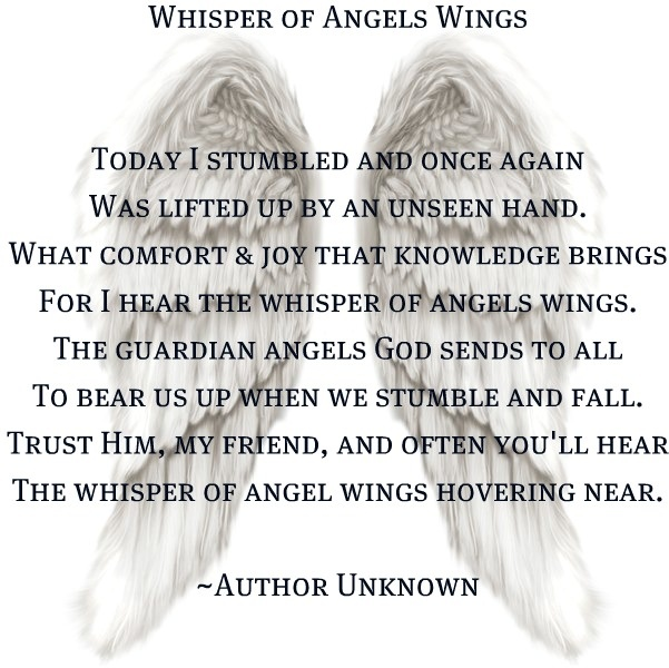 My Son is my Angel and sends me signs when I think I can't stand to live anymore.