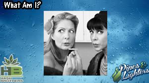 It's a rainy day, women getting stoned, an infamous song  @Hash_Brothers #games #boardgames #CO #Pot #MMJ #Trivia #Fun #Marijuana #Weed #Dabs #Stoners #Hash #High #Pipes #Lighters @WeedLifeNetwork #stoned #Stoner #ganja #420 #Chronic #Dope #Dab #Stash #Spliff #OR #WA #AK #DC #legalizeit @IndyRecords