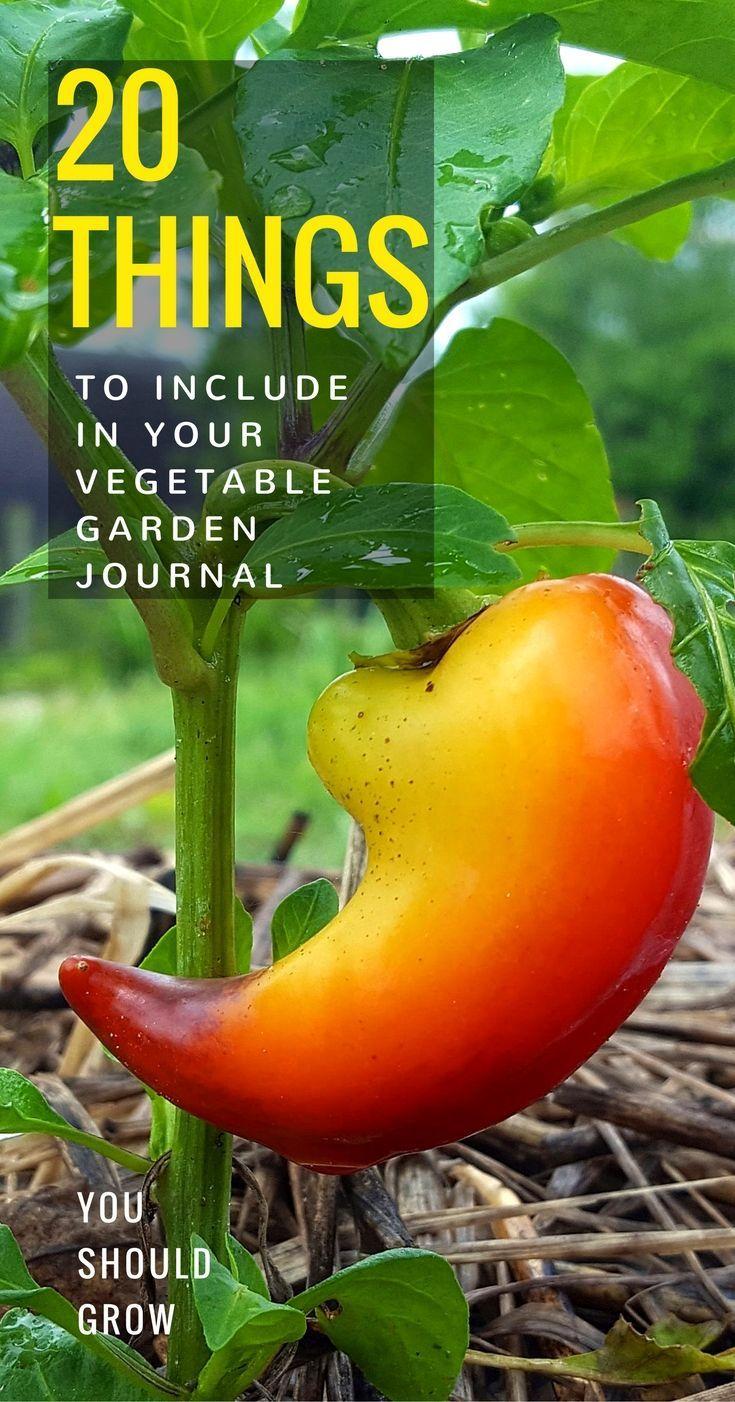 Garden journal, garden planner, vegetable garden journal, and journaling ideas. What to include in your vegetable garden journal.