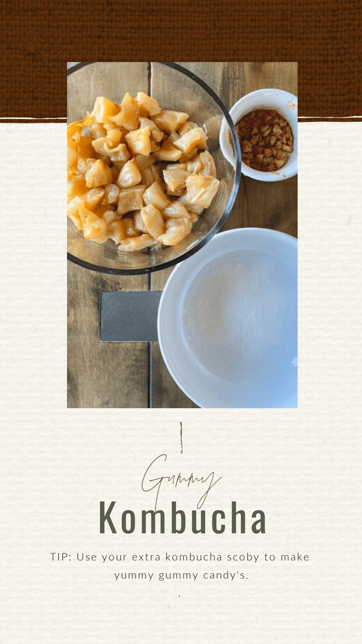 How to Make Kombucha Scoby Gummy Candies • Craft Thyme in