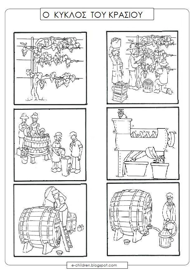 szőlő - must - bor 3