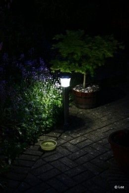 Finding The Best Solar Landscape / Garden Lights: 5 Great Options