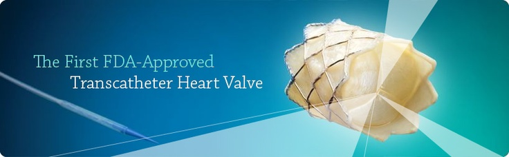 Transcatheter Heart Valve offers children and adults with failing pulmonary valve conduits a revolutionary option for treating pulmonary valve conduit failure without open heart surgery.