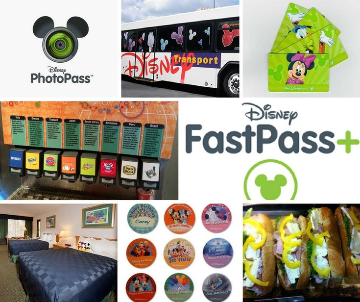 The Happiest Place on Earth doesn't come cheap… we show youwhere to buy the cheapest tickets & all the essential tips you need to spend absolutely no money in the parks– enj…