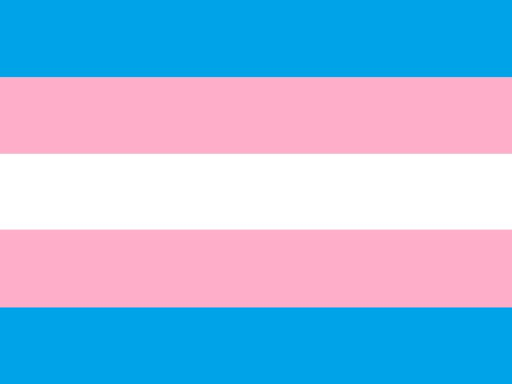 Pride flags are often used at pride parades and other visibility events to show identification as, or support for, a particular gender identity. They may also be combined with gender symbols.