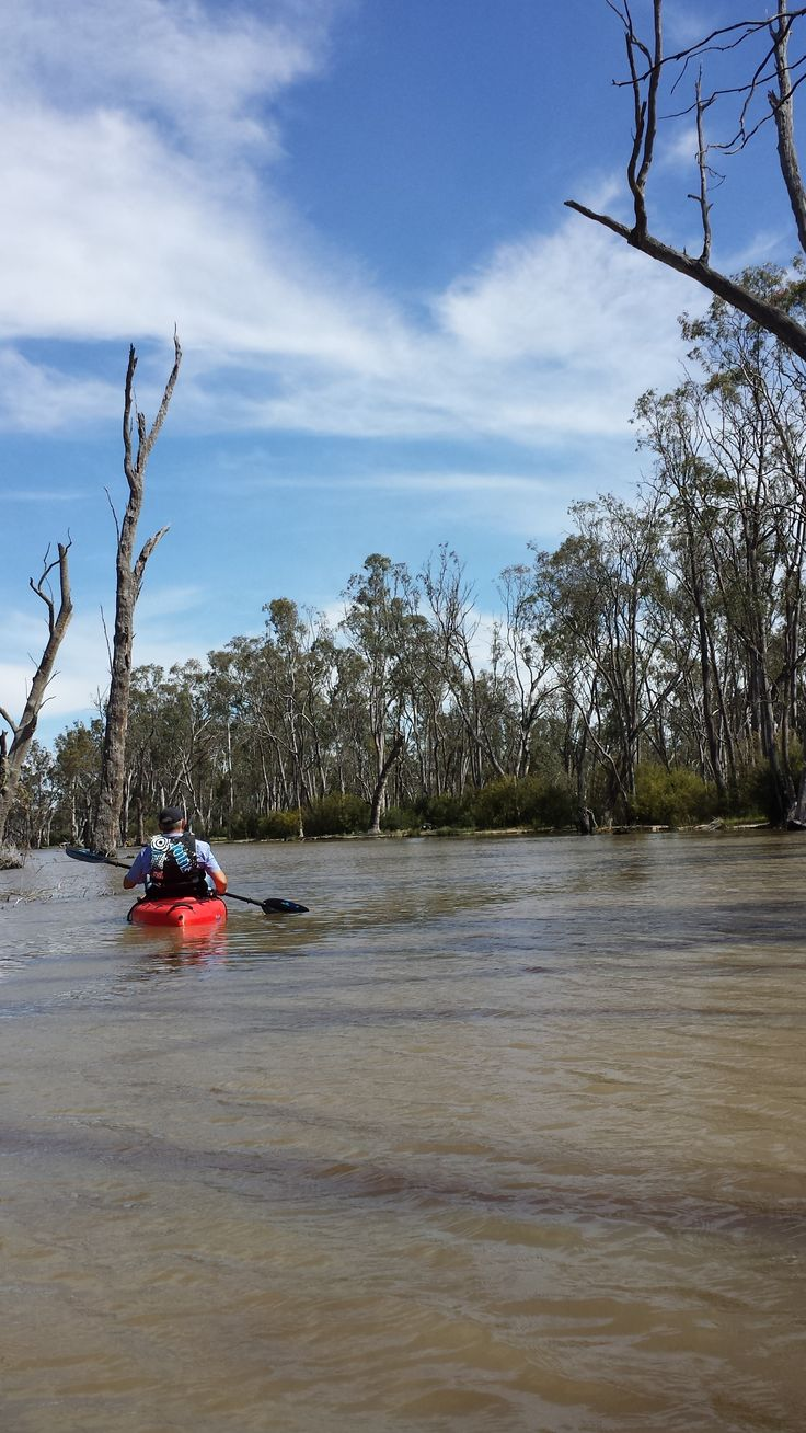 Gunbower Island, Murray River  http://www.destinationsmag.com.au/