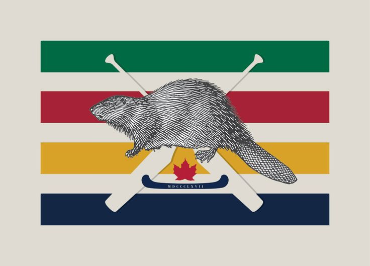 Canadian Beaver art print featuring voyageur canoe paddles and Hudson's Bay colours