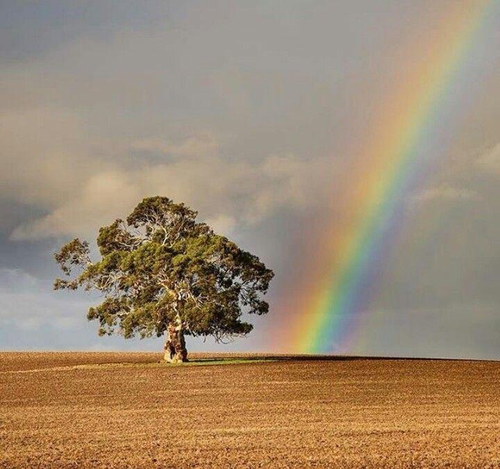 Kilmore, Victoria, AUS