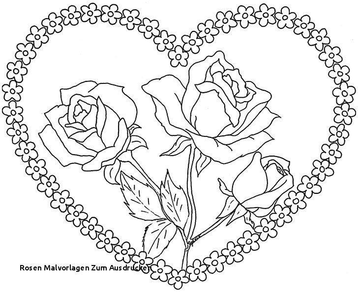Rose Malvorlagen malvorlage rose elegant rosen malvorlagen