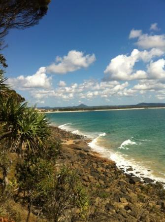 Noosa #Queensland #Australia  http://www.tripadvisor.com.au/ShowForum-g255067-i460-Queensland.html