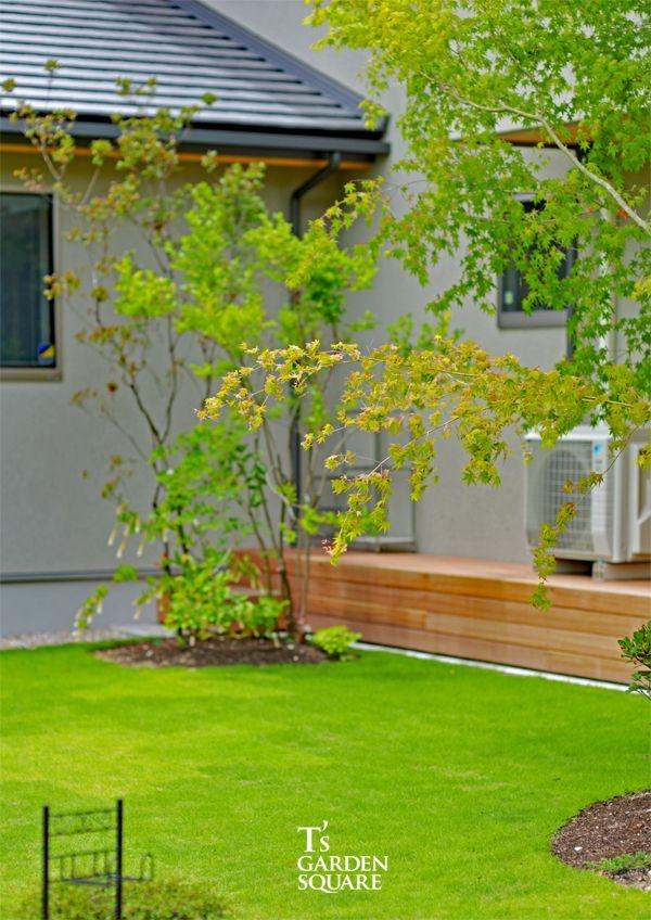芝の庭 マイホーム 家 外観 工務店 注文住宅 シック 雑木の庭