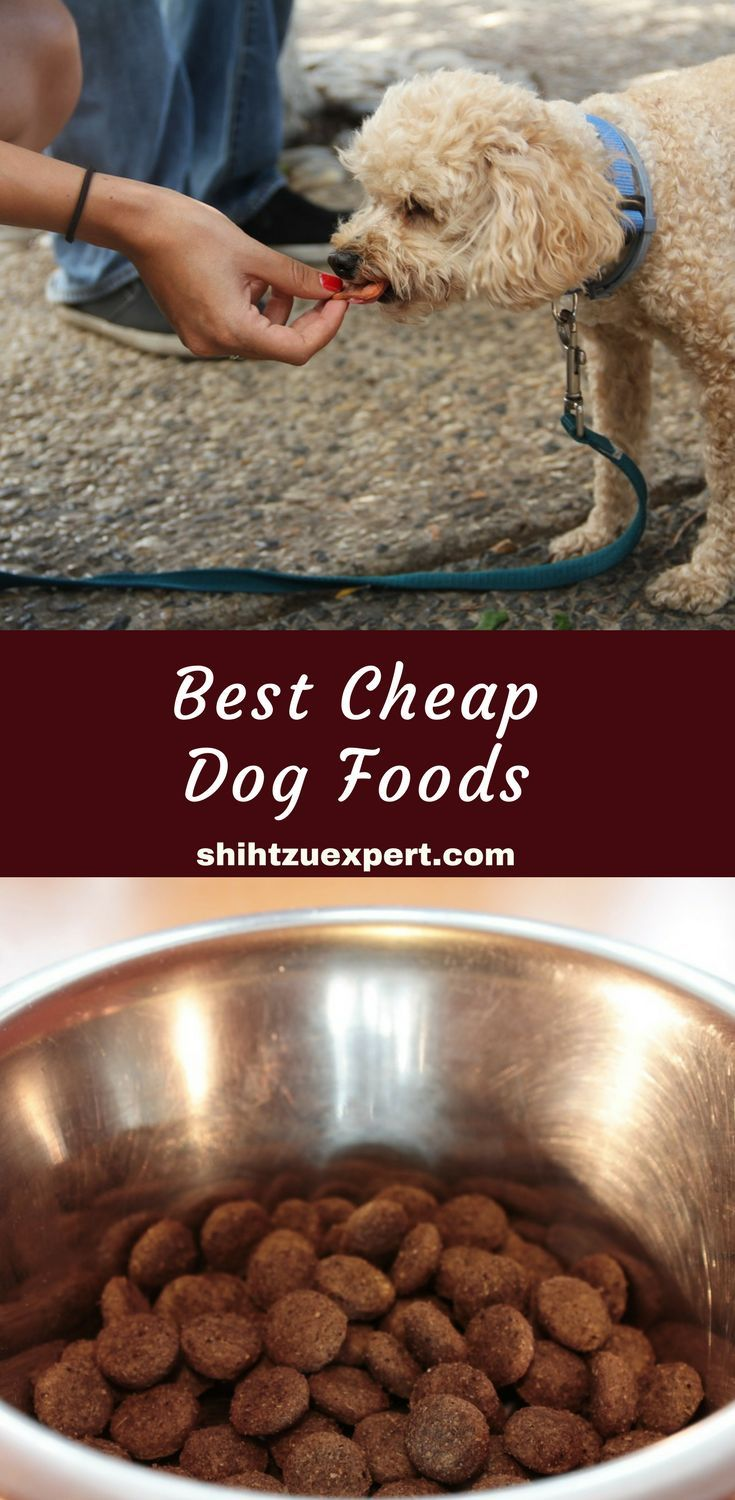 Best Cheap Dog Foods Our Top 10 Picks Of High Quality Brands That Are Still Affordable Under 1 Per Pound In 2019 Dog Food Recipes Best Cheap Dog Food Cheap Dog Food