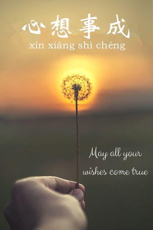  心 (xīn)heart, mind ; 想 (xiǎng)think,want 事(shì)thing,affair ; 成(chéng)succeed, accomplish 心想事成:all wishes come true e.g. (Zhù nǐ xīn xiǎng shì chéng!) 祝你心想事成! May all your wishes come true! 