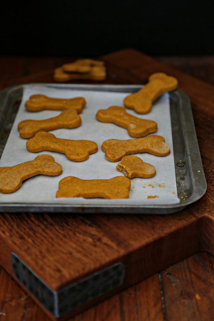Peanut Butter Pumpkin Dog Treats Recipe