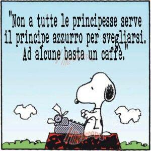 Il saggio Snoopy