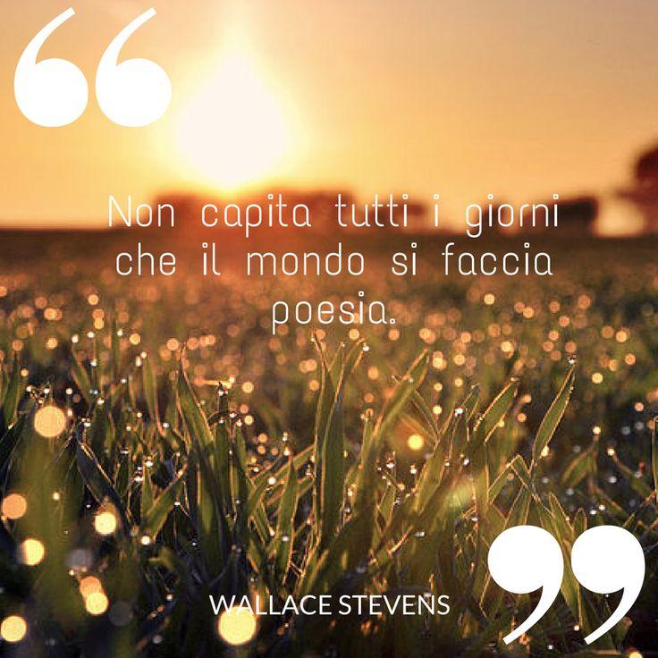 Non capita tutti i giorni che il mondo si faccia poesia.   #libro #mondo #poesia #ilovewriting #writer #quote #quotes #citazioni #wallace #wallacestevens