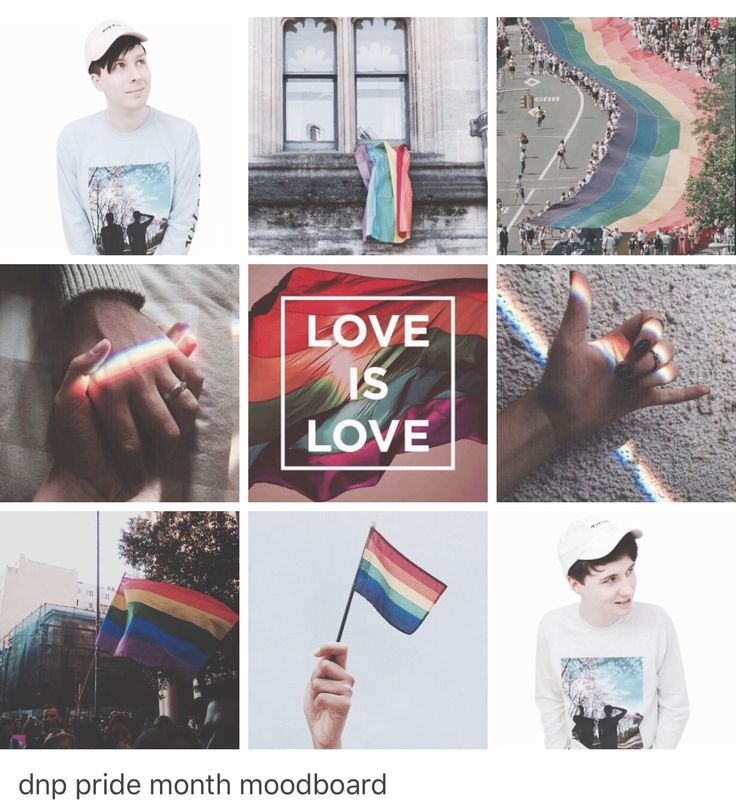 Even if Dan and Phil aren't gay or bi, we know that they would be honored to support gays. Love them!