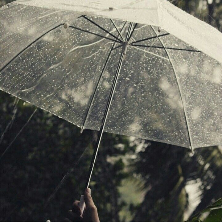 Payung hujan #photography