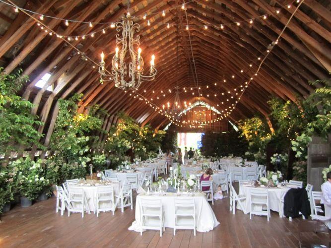 17 Best Images About Farm Weddings On Pinterest: 52 Best Images About Black Fox Farms Weddings On Pinterest