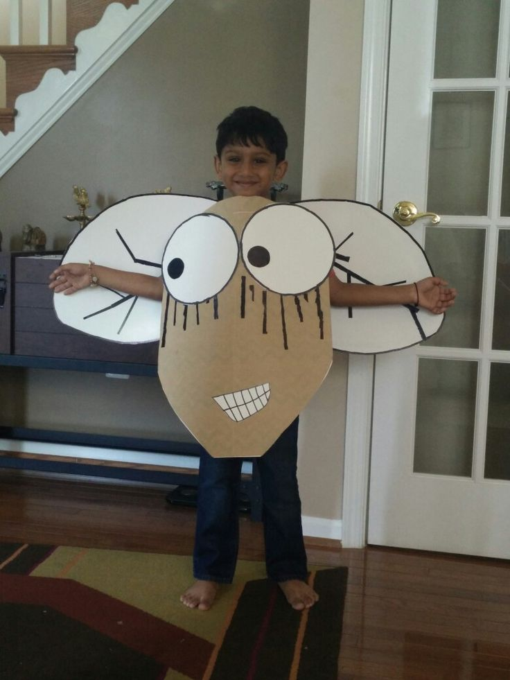 Pin By Anagha Dange On Fly Guy Diy Costume Book