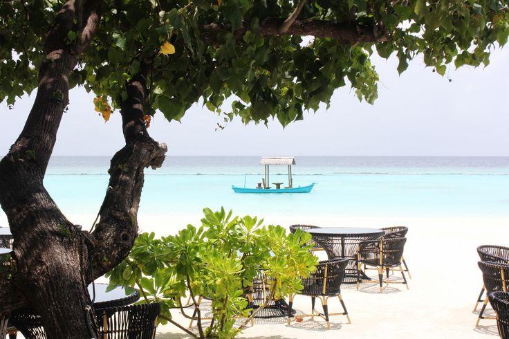 FRICHIC - Maldives: Constance Halaveli