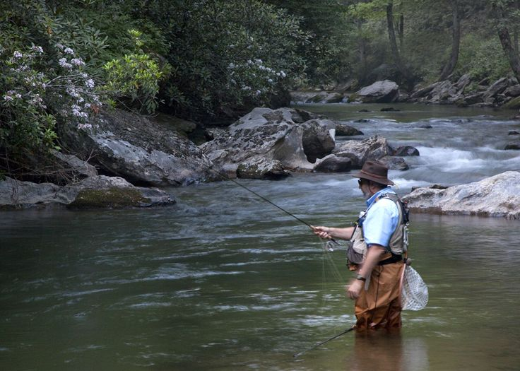 1000 images about things to do in oconee county sc on for Lake oconee fishing