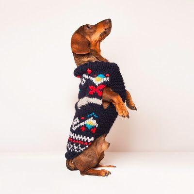 Jersey para perro modelo Noruega