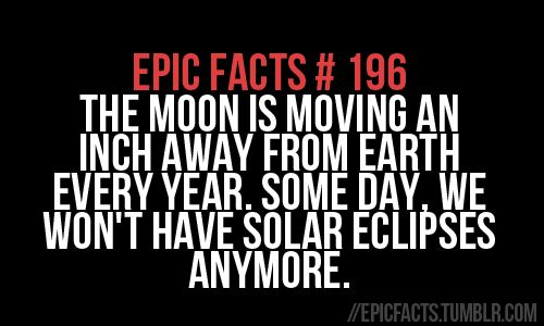 Epic Facts # 196